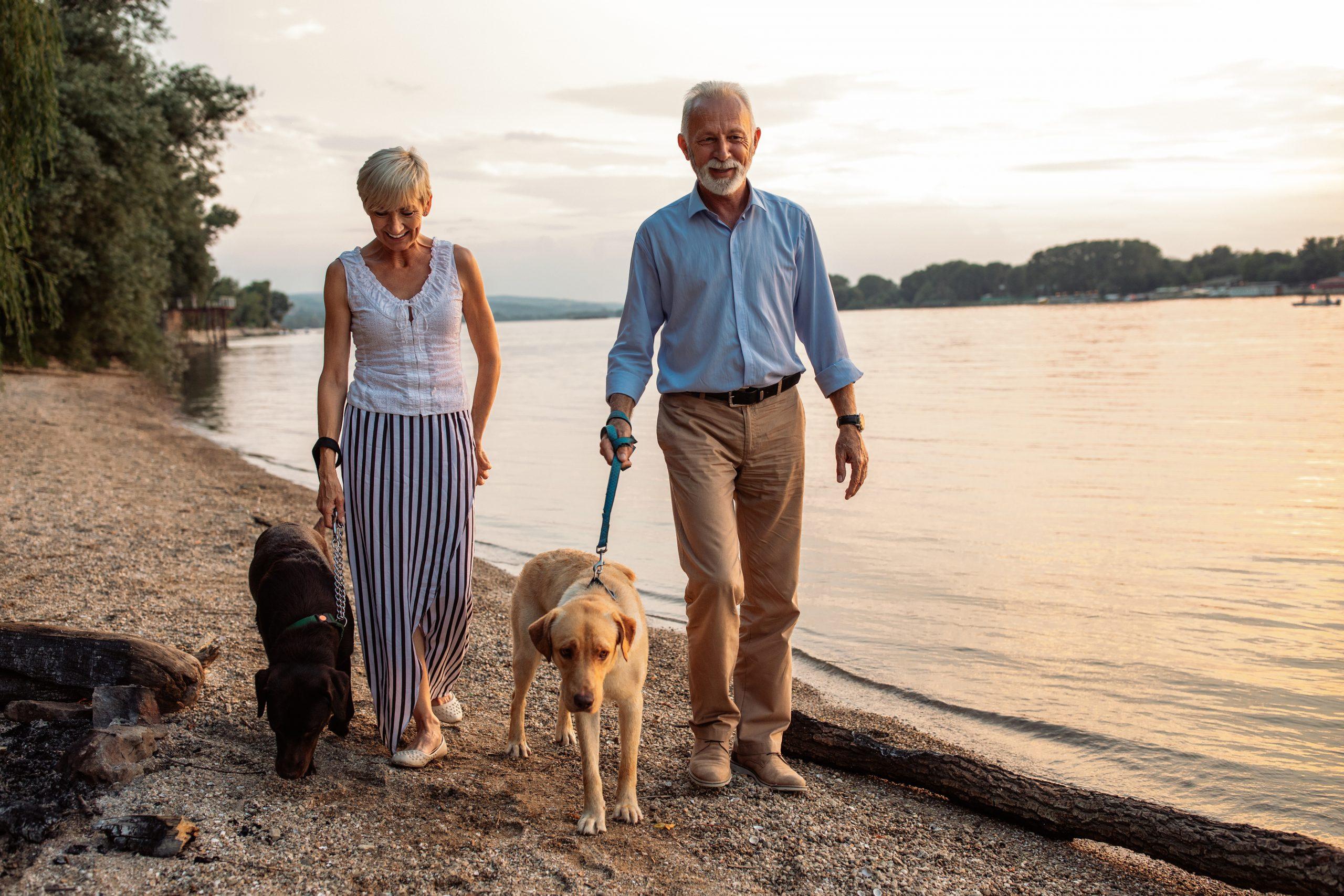 starý pár s dvomi psami sa prechádza po pláži